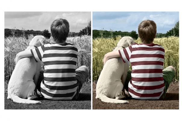 Ilustrasi foto yang diedit pakai Adobe Photoshop Elements 2020