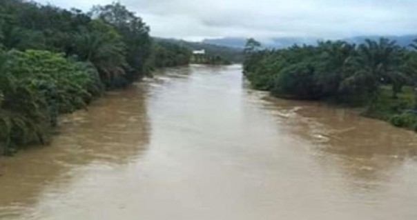 Debit air sungai Kampar mengalami peningkatan pada Rabu (12/2/2020) siang.